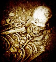 Giant skeletons of the ancient Mound Builders unearthed in Wisconsin http://www.wisconsinsickness.com/death-trip/giant-skeletons-mound-builders/