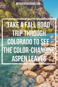 Try taking a road trip through Colorado for the best chance to see a variety of autumn leaf color, including yellow, orange, and red aspen leaves. #OutThereColorado #Travel #Colorado #ColoradoVacation #ColoradoSprings #Denver #Breckenridge #RockyMountainNationalPark #Mountains #Adventure #ColoradoFall #ColoradoPhotography #ColoradoWildlife #Mountains #Explore #REI #optoutside #Hike #Explore #Vacation Autumn Leaf Color, Aspen Leaf, Colorado Hiking, Rocky Mountain National Park, Best Hikes, Road Trip, Take That, Leaves, Vacation