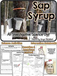 Maple Sugar Bush Science and Social Studies Unit for primary grades Social Studies Resources, Teaching Resources, School Resources, Spring Activities, Craft Activities For Kids, Maple Syrup Tree, Sugar Bush, Maple Sugar, Sequencing Activities
