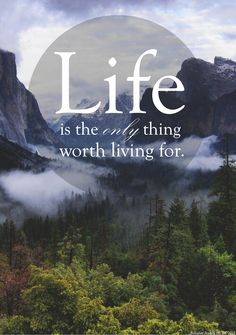 """""""Life is the only thing worth living for"""" - my own work :)"""