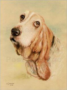 Marita Zacharias - Basset Hound - Hundeportrait handgemalt bei Posterlounge