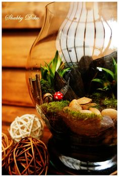 Glass Ball, Terrarium, Table Decorations, Home Decor, Terrariums, Decoration Home, Room Decor, Home Interior Design, Dinner Table Decorations