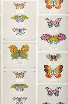Farfalla | Papel de parede dos anos 70