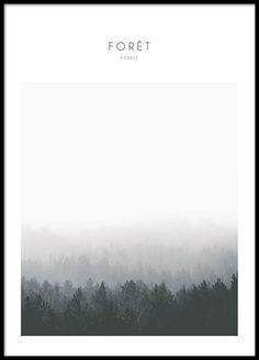 Sort-hvide plakater med naturmotiv af skov.