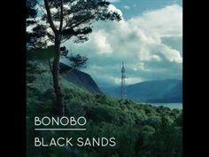 Bonobo - Stay The Same (feat. Andreya Triana)