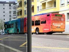 Bus à Pierrefleur Lausanne, Bus, Red