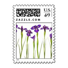 >>>Hello          	Purple irises flower postage stamp stamps           	Purple irises flower postage stamp stamps so please read the important details before your purchasing anyway here is the best buyHow to          	Purple irises flower postage stamp stamps lowest price Fast Shipping and sav...Cleck Hot Deals >>> http://www.zazzle.com/purple_irises_flower_postage_stamp_stamps-172971874855120188?rf=238627982471231924&zbar=1&tc=terrest