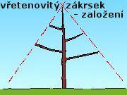 Jabloně - řez Utility Pole, Sad, Gardening, Plants, Garten, Lawn And Garden, Planters, Garden, Plant