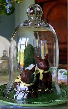 chocolate bunnies in a cloche... sweet for Easter