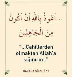 Cahillerden olma!  #cahil #olma #dua #ayet #amin #islam #müslüman #türkiye #istanbul #ilmisuffa Islam Religion, Quran, Tintin, Allah, Muslim, Olinda, Islam, Holy Quran