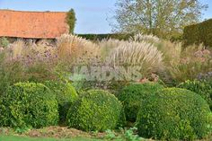 jardin plume1