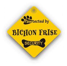 Bichon Frise Security