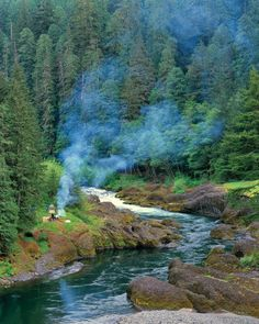 Camping along the Clackamas River in Mount Hood National Forest, Oregon.