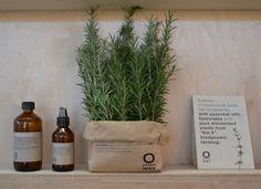 #head.spa #biodinamic #botanic #greenchemistry #oway