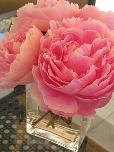 I love peonies. They remind me of the beautiful flower gardens my great-aunt grew..Miss her