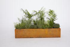 Planteringsrör rektangel - Rostikt.se