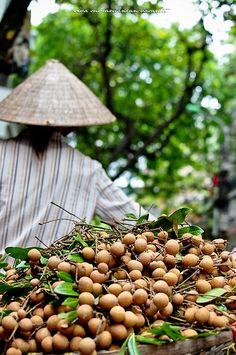 Hanoi | da Siva Vasanth