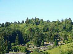 Friedhof Wehrbusch mit Vulkan im Hintergrund