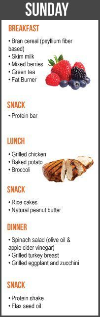 THE SEVEN DAY FAT LOSS DIET PLAN -