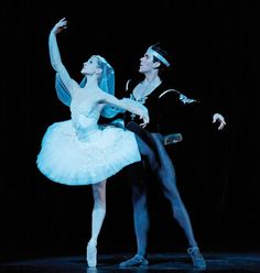 Image result for la bayadere shades