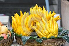 Buddha's Hand Fruit - Download From Over 56 Million High Quality Stock Photos, Images, Vectors. Sign up for FREE today. Image: 66389661