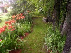 How to Plan a Perennial Flower Garden