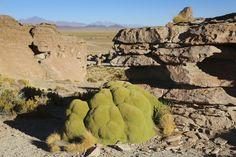 Valle de las Roccas zwischen San Christobal und Villa Mar Mount Rushmore, Villa, Mountains, Nature, Travel, Santa Cruz, Bolivia, National Forest, World