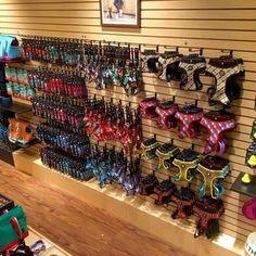 Dog Grooming Shop, Dog Grooming Salons, Dog Grooming Business, Pet Shop, Pet Store Display, Pet Food Store, Zee Dog, Dog Hotel, Dog Daycare