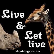 Resultado de imagem para save the animals quotes