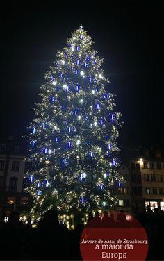 Na place Kleber a maior árvore de natal da Europa faz a alegria das crianças, em Estrasburgo.