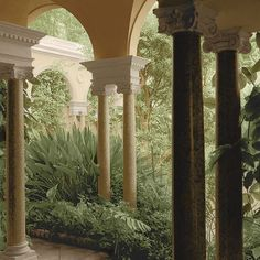 Portico Garden No. 2 by Alan Blaustein Photographic Print on Wrapped Canvas