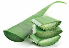 Aloe Vera, Natural Cures, Organic Beauty, Detox, The Cure, Herbs, Health, Salud, Health Care