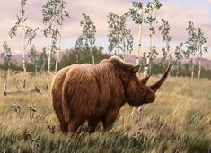 Woolly Rhinoceros by Ozja