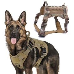 Tactical Dog Harness, Nylons, Pet Dogs, Pets, Military Dogs, Police Dogs, Dog Vest, Dog Safety, Companion Dog