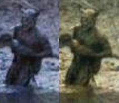 The Bahia Horned Beast - the strange humanoid supposedly photographed in Brazil back in 2007.