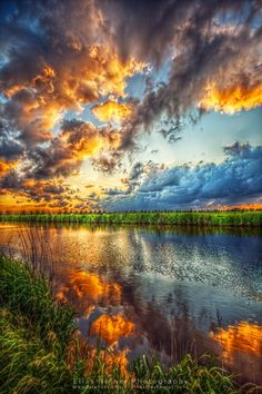 Gorgeous Sunset Ostfriesland, Germany Swans and sunset