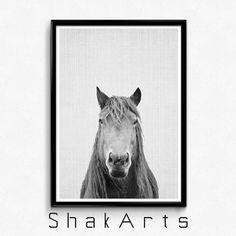 Horse Photography Horse Decor Art Wild Horses Black by ShakArts