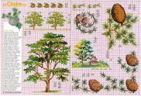 "Gallery.ru / Chispitas - Альбом ""Encyclopedie du point de croix 1998"" Cross Stitch, Diagram, Map, Dots, Animales, Punto Croce, Crossstitch, Cards, Maps"