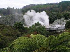 rotorua hot springs - Google Search