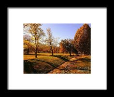 """Painting With Shadows"" from the photography studio of Scott D Van Osdol available at fineartsamerica.com"