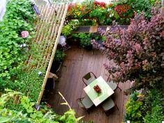 Small space, luscious garden.