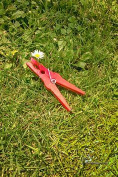 0052 Oh Blümchen klein | Little Flower #klammerpic #rot #clothespin #red #ontour