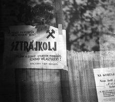 Hungary 1956 Eastern Europe, World War Ii, Hungary, Budapest, Revolution, History, Projects, World War Two, Historia