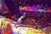 """New artwork for sale! - """" Bird Botanical Garden Nature Park  by PixBreak Art """" - http://ift.tt/2tOEgKj"""