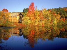 Fall-Season - Pixdaus.   #autumn
