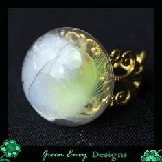 Hollow glass dome ring:  feathers by GreenEnvyDesigns on Etsy