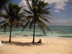 My favorite place Akumal Mexico