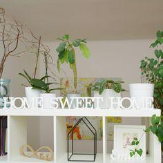 home sweet home dekorácie - Hľadať Googlom Sweet Home, Planter Pots, House Beautiful