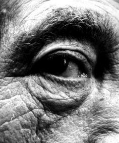 Giocometti, 1963 • BILL BRANDT