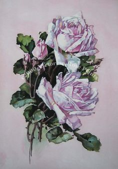 Print FREE SHIP  Mauve Pink Cabbage Roses by VictorianRosePrints, $11.99